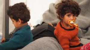 Flymtingbarn i Idomeni i Grekland