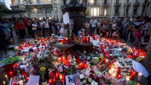 Ett blomhav vid Font de Canaletas i Barcelona, till minnet av offren i terrorattacken den 17.8.2017.