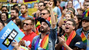 Massomröstning för samkönade äktenskap i Sydney.