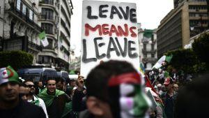 Demonstration mot regeringen i Algeriets huvudstad Alger