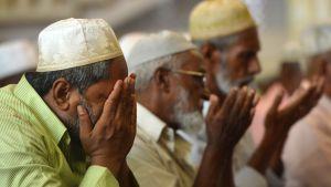 Lankesiska muslimer ber i en moské under fredagsbönen i Colombo 26.4.2019