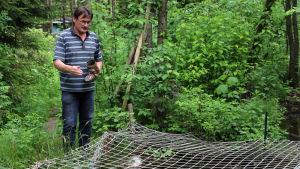 Korttidsarbetaren Hans Pfister matar forellerna i sin fiskodling