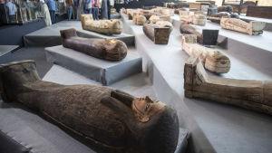 Arkelogiskt fynd; sarkofager i Egypten presenterades 14.11.2020