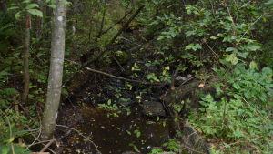En å i Krämars - Ingarskila å.