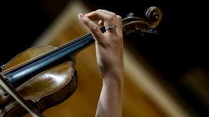 Pekka Kuusisto soittaa viulua