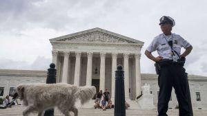 Högsta domstolen i USA