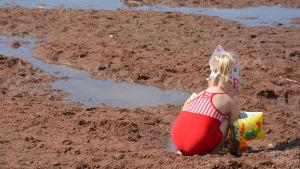 En liten flicka som leker på en strand.