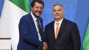 Matteo Salvini och Viktor Orbán i  Budapest 2.5.2019
