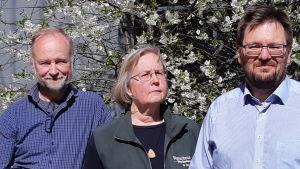 Tre personer, en kvinna och två män, framför ett blommande körsbärsträd.