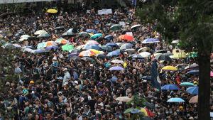 Tiotusentals människor med paraplyn demonstrerar i Hongkong.