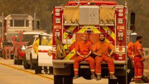 Två brandmän sitter bak på en brandbil och tar paus.