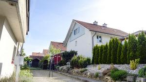 Polisen har påträffat flera dödsoffer i en bostad i Würenlingen i kantonen Aargau.