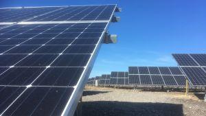 Solpaneler i den nya solkraftsparken på Dagö i Estland.