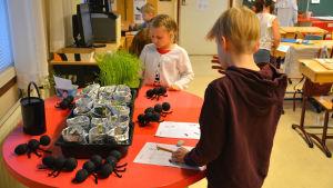 En flicka och en pojke står vid ett bord och fyller i korsord. Bredvid står det planteringar och myror som de har pysslat.