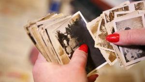 Två händer, med rött nagellack på naglarna, bläddrar i en bunt med mer än 20 gamla, svartvita fotografier. På det översta fotot finns en flicka och en pojke i militärkläder, troligen från en permission under kriget.
