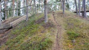 En smal stig och flera gångbroar