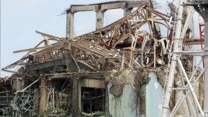 Fukushima i Japan efter kärnkraftsolycka