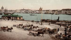 Heinätori 1800-luvulla