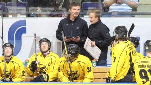 SaiPa-spelare sitter på avbytarbänken framför chefstränaren Tero Lehterä.