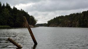 Vattnet i Sibboviken och ett par träpinnar som stiger upp ur det.