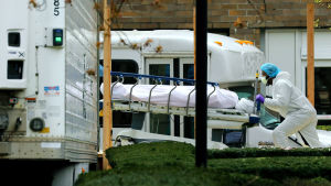 Ett lik lastas in i en container som fungerar som provisoriskt bårhus utanför sjukhuset Kingsbrook Jewish Medical Center.