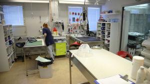 Kouvolan eläinsairaalan työntekijä hoitohuoneessa.