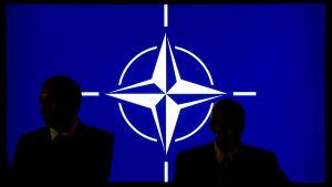 Natos logo.