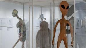 kuva scifi näyttelystä, avaruusolio