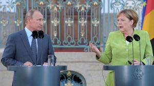 Rysslands president Vladimir Putin och Tysklands förbundskansler Angela Merkel håller presskonferens inför sitt möte i Meseburg norr om Berlin den 18 augusti 2018.