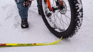 en skida och en tjockcykel i skidspåret