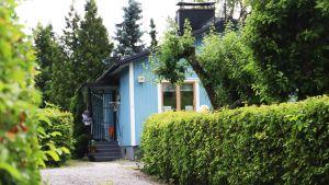 En grusväg leder fram till ett blått hus skymtar bakom grönskande träd och buskar.