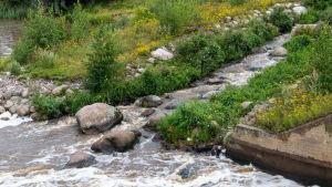 Fiskväg som mynnar ut i en å.