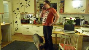 Johan Holmberg på Skeppsdal Family står i köket och talar i telefon medan minigrisen Tyyne snusar på hans fötter