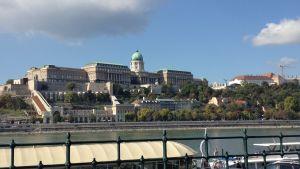 Buda Castle vid Donau