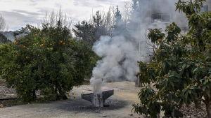 Det israeliska jaktplanet störtade i en apelsinfarm i norra Israel