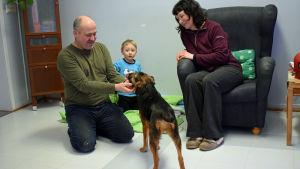 Gatuhunden Emilia från Sankt Petersburg har flyttat in hos Brent Hasty och Eeva Patrakka i Kouvola. Sonen Max är 3 år.