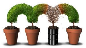 Tre krukor med gröna träd som väcker upp ur dem samt en oljetunna där det växer upp ett sjukt träd. Alla träds kronor är sammankopplade.