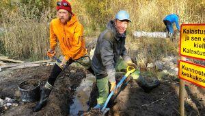 Mikko Peltsi Peltola ja Tom Nylund kaivavat ojaa hauen kutualueen kunnostustalkoissa