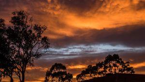 Skogsbränderna färgar kvällshimlen röd i sydöstra Australien