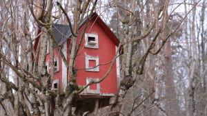 Ett rött, ganska stort hus som fungerar som fågelholk placerat i ett träd.