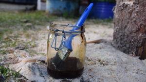 Tjära i en glasburk med pensel på marken.