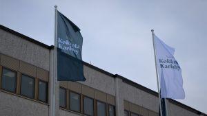 Flaggor utanför stadshuset i Karleby.