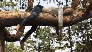 Kvinna ligger på tjock tallgren med armar och ben dinglande ner