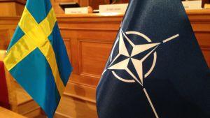 Natofebern är hög i Sverige
