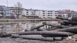 Stockar och rör som man fått upp vid muddringen av Borgå å