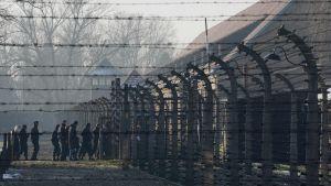 Besökare vid Auschwitz-Birkenaus i Oswicim i Polen.