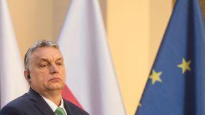 Ungerns premiärminister Viktor Orban