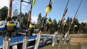 Flera fiskspön på rad bak på en båt.