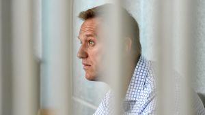 Aleksej Navalnyj fotograferad genom galler.