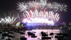 Fyrverkerier utanför operahuset i Sydney i Australien.